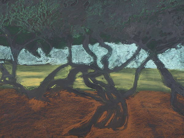 Contemporary Tree Landscape Poster featuring the mixed media La Jolla II by Leah Tomaino