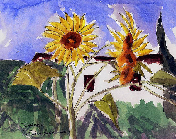 Watercolors Poster featuring the painting La Romita Sunflowers by Tom Herrin