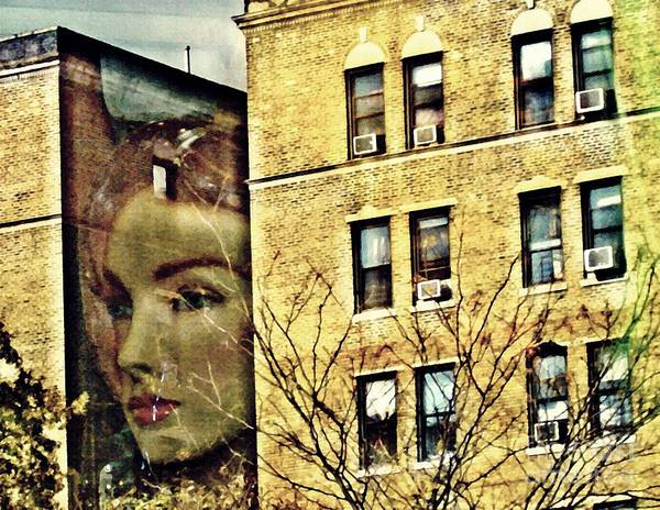 Face Poster featuring the photograph Lady Of The House by Sarah Loft