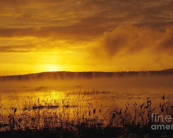 Sunrise Poster featuring the photograph Lake Massabesic - Auburn New Hampshire Usa by Erin Paul Donovan