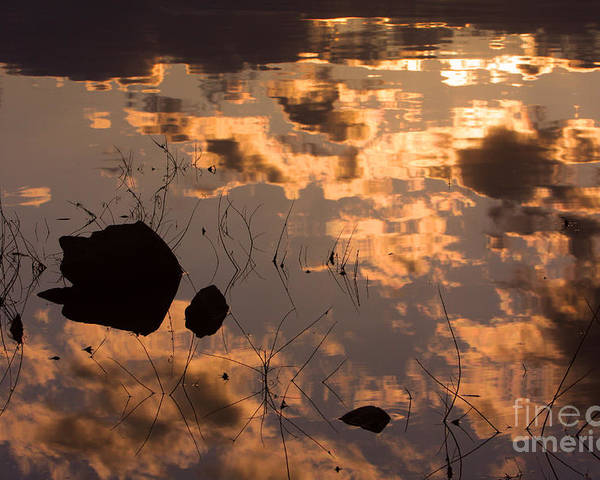 Sunrise Poster featuring the photograph Lake Sunset Reflections by James BO Insogna