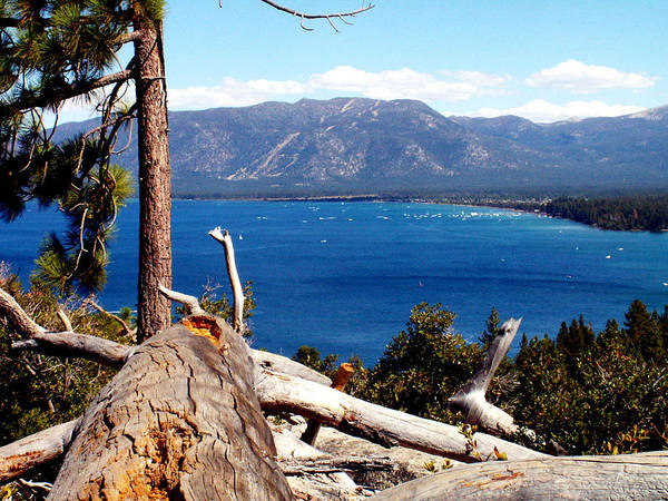 Tahoe Poster featuring the photograph Lake Tahoe by Bob Welch