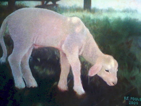 Lamb Poster featuring the painting Lamb Of God by Rebecca Poole