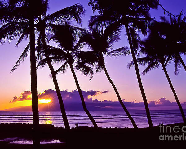 Landscapes Poster featuring the photograph Lanai Sunset by Jim Cazel