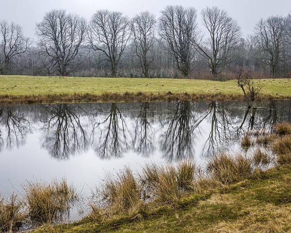 Winter Poster featuring the photograph Landscape by Elmer Jensen