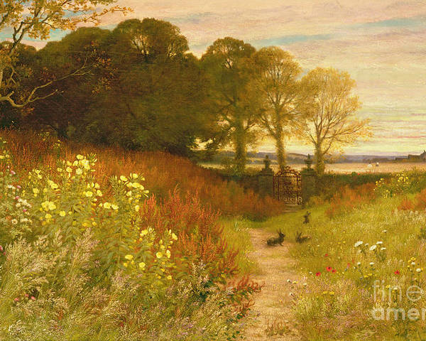 Landscape Poster featuring the painting Landscape With Wild Flowers And Rabbits by Robert Collinson