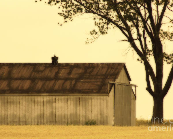 Farm Poster featuring the photograph Lazy Days Barn by Cathy Beharriell