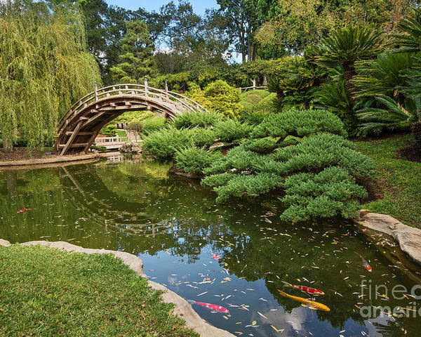 Lead The Way The Beautiful Japanese Gardens At The