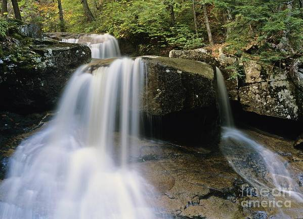Wilderness Poster featuring the photograph Ledge Brook - White Mountains New Hampshire Usa by Erin Paul Donovan