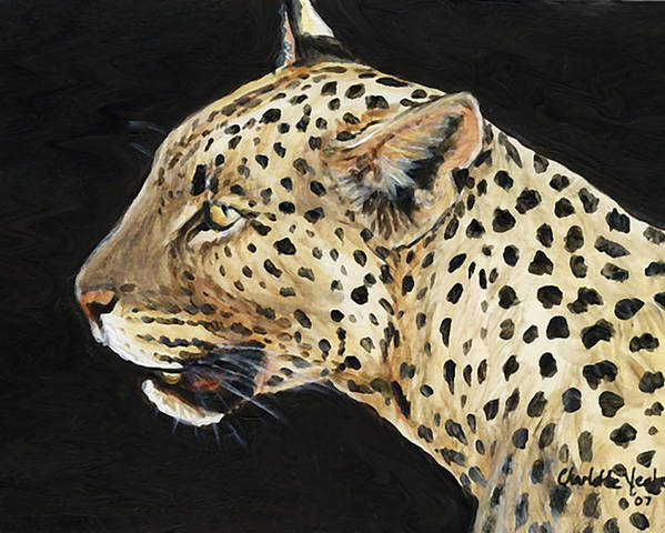Leopard Poster featuring the painting Leopard by Charlotte Yealey