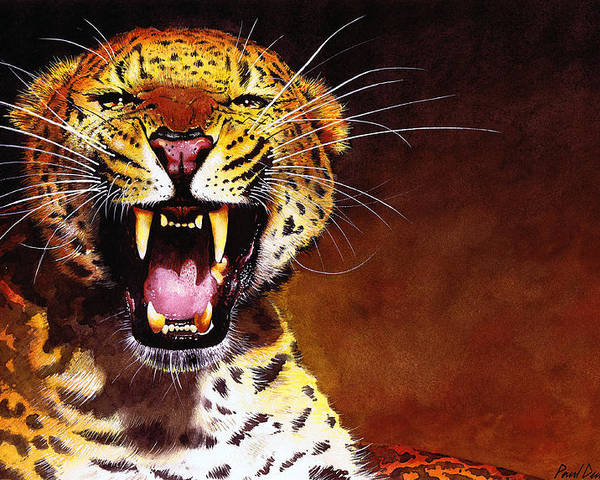 Leopard Poster featuring the painting Leopard by Paul Dene Marlor