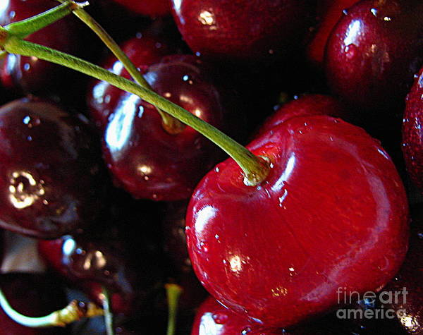 Fruit Poster featuring the photograph Life's A Bowl Of Cherries by Colleen Kammerer