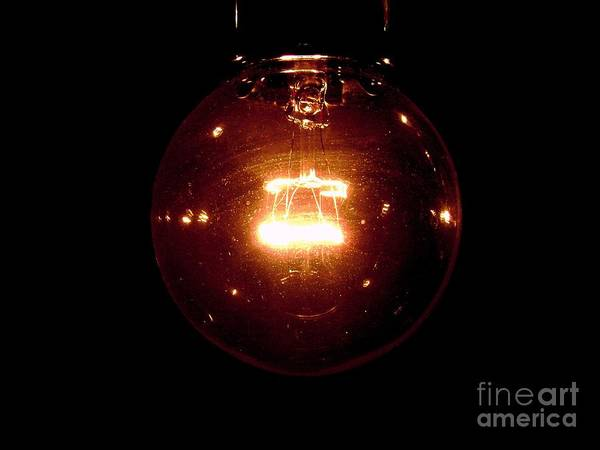 Light Poster featuring the photograph Light Bulb by Dj Ewing