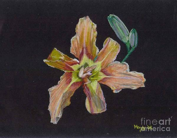 Lily Poster featuring the pastel Lily 2 by Mendy Pedersen