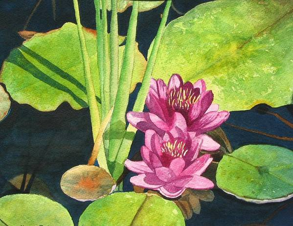 Lily Pads Poster featuring the painting Lily Pads by Sharon Farber