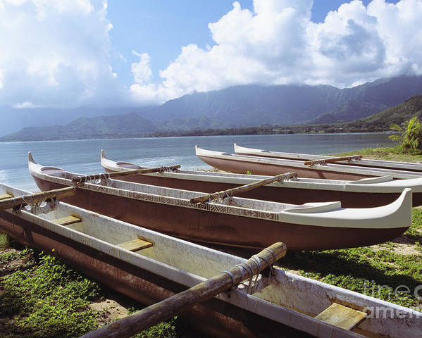 Aku Poster featuring the photograph Line Of Outrigger Canoes by Joss - Printscapes