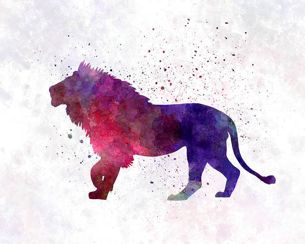 Lion Poster featuring the painting Lion 01 In Watercolor by Pablo Romero