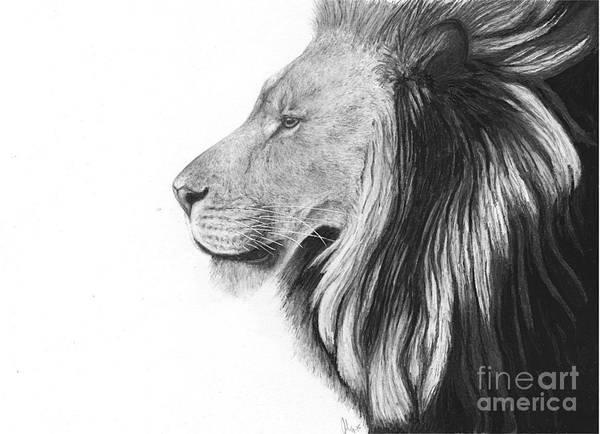Lion Of Judah Poster by Julie Bockes