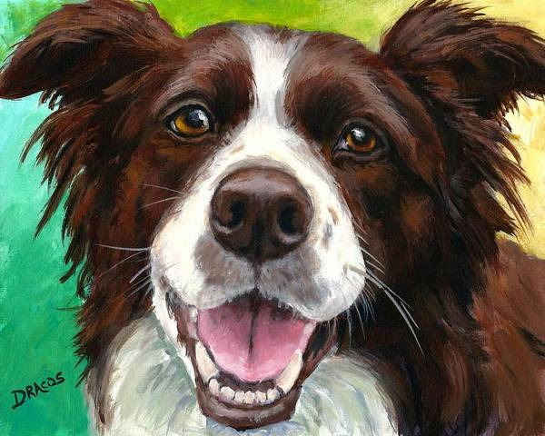 Border Collie Poster featuring the painting Liver And White Border Collie by Dottie Dracos