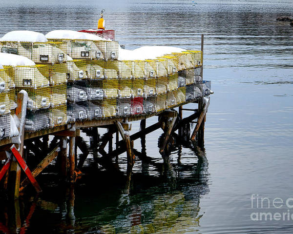 Maine Poster featuring the photograph Lobster Traps In Winter by Olivier Le Queinec