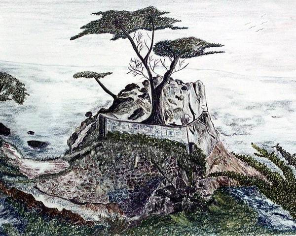 California Poster featuring the drawing Lone California Tree by Diane Frick