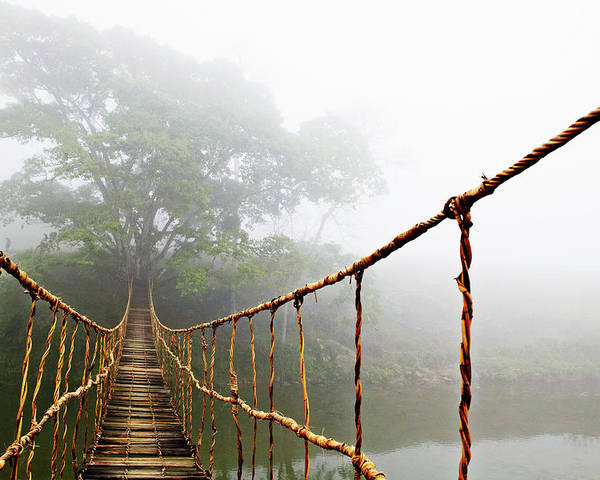 Jungle Journey Bridge Poster featuring the photograph Long Rope Bridge by Skip Nall