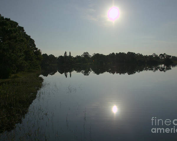 Sun Water Trees Poster featuring the photograph Looking Into The Sun by Tommy Baker