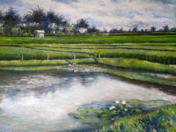Bali Poster featuring the painting Lotus Flowers And Rice Field Ubud Bali Indonesia 2008 by Enver Larney