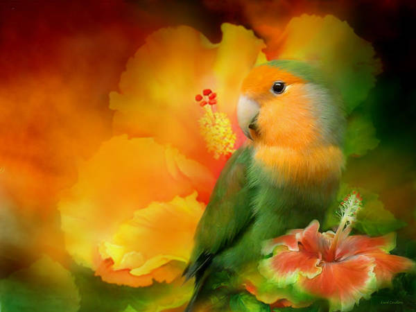 Lovebird Poster featuring the mixed media Love Among The Hibiscus by Carol Cavalaris