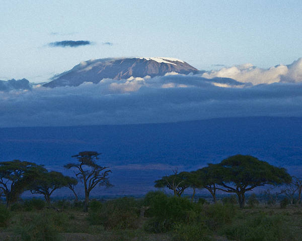 Africa Poster featuring the photograph Magnificent Kilimanjaro by Michele Burgess