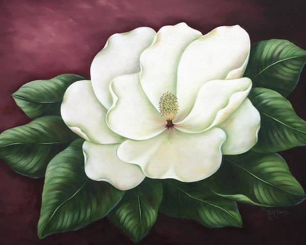 Flower Poster featuring the painting Magnolia by Ruth Bares