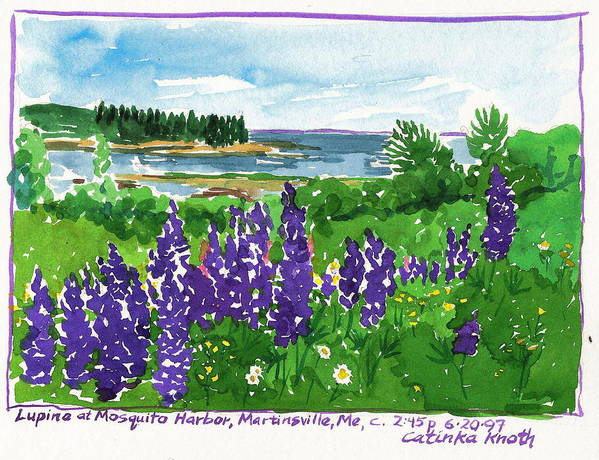 Purple Lupine Poster featuring the painting Maine Coast Purple Lupine Art by Catinka Knoth