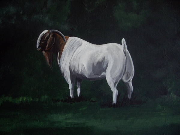 Goat Poster featuring the painting Majestic Boer Buck by Glenda Smith