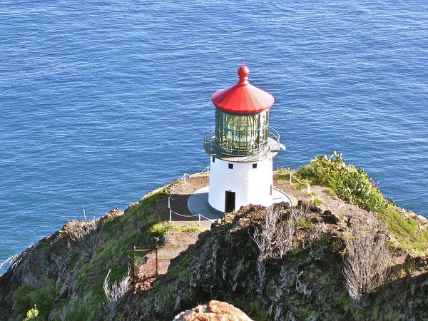 Landscape Poster featuring the photograph Makapuu Lighthouse 1065 by Michael Peychich