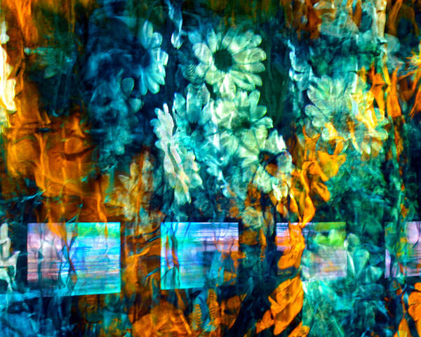 Abstract Poster featuring the photograph Malerische - Picturesque by Linda McRae