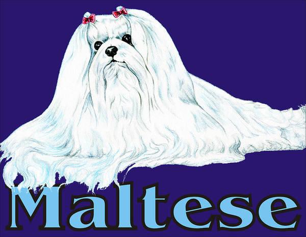 Maltese Poster featuring the digital art Maltese Pop Art by Kathleen Sepulveda