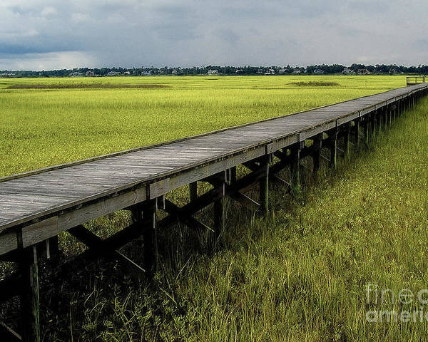 Marsh Poster featuring the photograph Marshland Boardwalk by Neil Doren