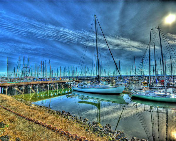 Sailboat Poster featuring the photograph Masts Without Sails by Dale Stillman