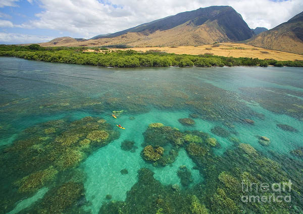 Above Poster featuring the photograph Maui Landscape by Ron Dahlquist - Printscapes