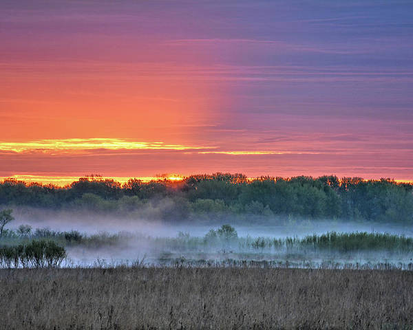 Fog Poster featuring the photograph May Ground Fog by Bonfire Photography