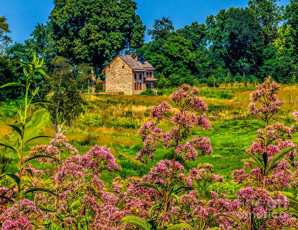 Flowers Poster featuring the photograph Meadow House At Longwood by Nick Zelinsky