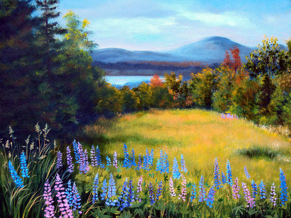 Spring Lupine Adorn The Edge Of This Hilltop Meadow Overlooking Mountains And Lakes Of Northern Maine. Poster featuring the painting Meadow Lupine II by Laura Tasheiko
