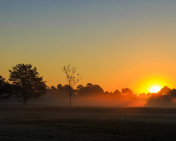 Sun Poster featuring the photograph Meadow Sunrise by Travis Rogers