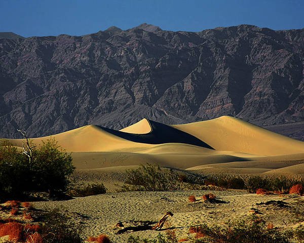 Death Valley National Park Poster featuring the photograph Mesquite Flat Dunes - Death Valley California by Christine Till