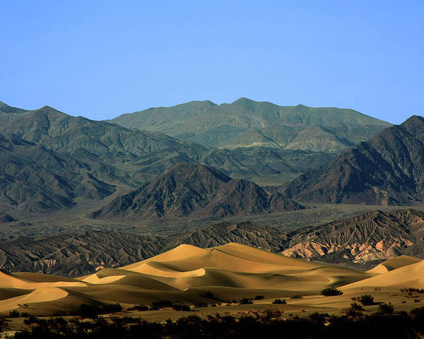 Death Valley National Park Poster featuring the photograph Mesquite Flat Sand Dunes - Death Valley National Park Ca Usa by Christine Till