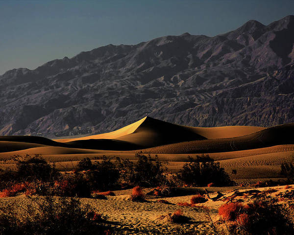 Death Valley National Park Poster featuring the photograph Mesquite Flat Sand Dunes Death Valley - Spectacularly Abstract by Christine Till