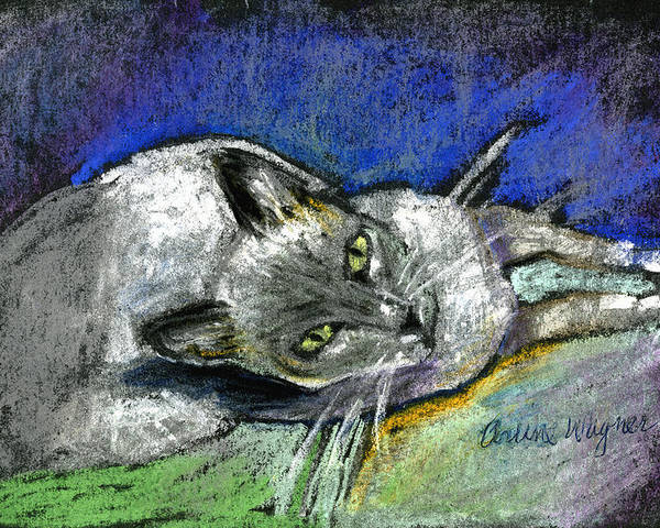 Cat Poster featuring the pastel Michael Campbell by Suzanne Blender