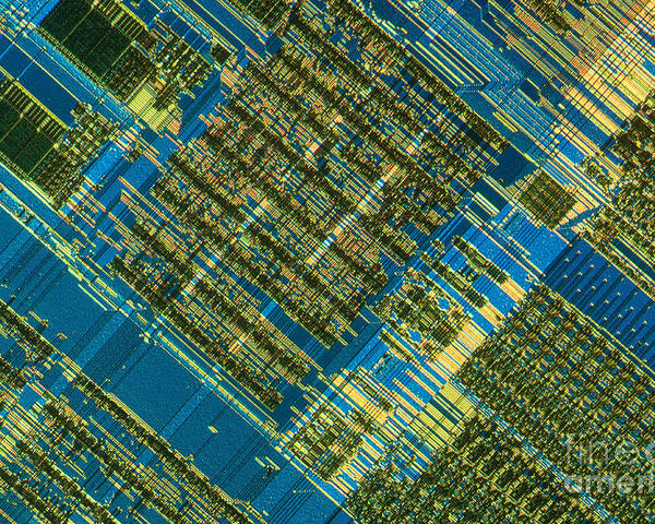 Science Poster featuring the photograph Microprocessor by Michael W. Davidson