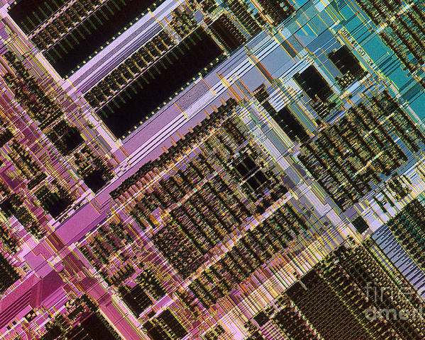 Microprocessor Poster featuring the photograph Microprocessors by Michael W. Davidson