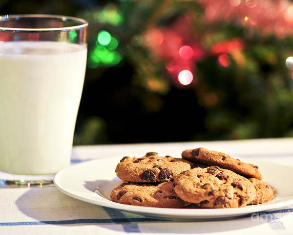 Cookies Poster featuring the photograph Milk And Cookies For Santa by Elena Elisseeva